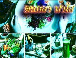 fhasai_food